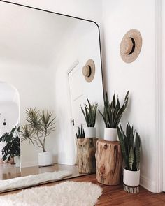 Make small spaces seem larger with a giant mirror. This idea will evolve any room into a beautiful clean space. Make small spaces seem larger with a giant mirror. This idea will evolve any room into a beautiful clean space. Decor, Boho Diy, Home Decor, Giant Mirror, Plant Decor, Tree Stump Side Table, Room Inspiration, Home Decor Inspiration, Apartment Decor