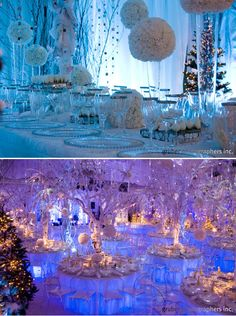 Winter wedding (Or really sweet xmas party) decor