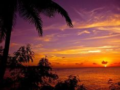 The Ultimate Travel Photo Wall - TripAdvisor St. Lucia, Caribbean  Photo by Tracy-ann S Paradise Found