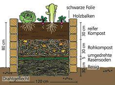 http://www.mein-schoener-garten.de/de/gartenpraxis/nutzgarten/gemueseanbau-im-hochbeet-22492?page=2