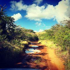 Antigua Road to Rendez Vous beach