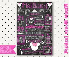 Minnie Mouse Birthday  Minnie Mouse Party  by PickleNoodleBoutique, $39.00