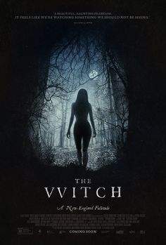 'Evil takes many forms' The Witch– stylized as The VVitch –is a 2015 American-Canadian horror film written and directed byRobert Eggers, who also helmed 2008 Poe-based sh…