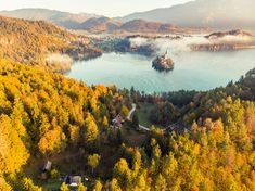 Lake Bled and church on island,SLovenia photo by on Envato Elements Julian Alps, Lake Bled, Pine Forest, Amazing Sunsets, Drone Photography, Slovenia, Aerial View, Exotic, Castle