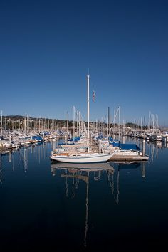 Fisherman's wharf Monterey CA. Pacific Grove California, Places In California, Monterey California, Monterey Bay, California Dreamin', Beautiful Places To Visit, Great Places, Places To Travel, Places To Go