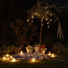 How to set up a Moonlight garden - perfect for stargazing and storytelling!