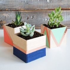 29 DIY Succulent Planter Ideas: Creative Ways to Display Succulents DIY Balsa Wood Succulent Planter Diy Wood Planters, Succulent Planter Diy, Succulents Diy, Planter Ideas, Hanging Planters, Diy Gifts For Mom, Diy Mothers Day Gifts, Clever Diy, Easy Diy