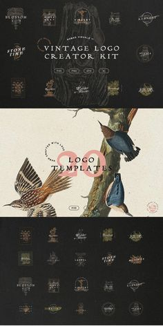 The Vintage Logo Creator Kit features 20 logo templates, 72 illustrations, 3 original fonts, and 20 extra elements to create beautiful and unique branding. #AffiliateLink Butterfly Illustration, Fish Illustration, Botanical Illustration, Illustrations, Logo Branding, Branding Design, Logos, Logo Design Template, Logo Templates