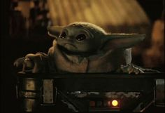 The Mandalorian Baby Yoda GIF TheMandalorian BabyYoda Mando Discover & Share Yoda Happy Birthday, Yoda Gif, Star Wars Baby, Disney Memes, Love Stars, Cute Characters, Gifs, Cute Animals, Cartoon