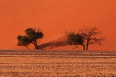 Christian Heeb - Travel and Nature Photography Tours and Workshops Photography Tours, Nature Photography, Namibia, Dune, Workshop, Africa, Country Roads, Christian, Celestial