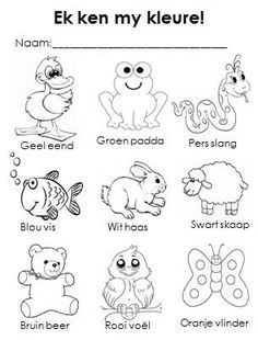 Colours work sheet (pre-school - Also available on our website… Preschool Learning Activities, Preschool Worksheets, Classroom Activities, Kids Learning, Preschool Rules, Preschool Colors, Grade R Worksheets, Afrikaans Language, Math Work