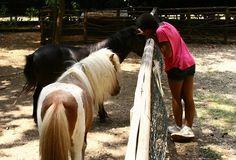 Michelle e i pony: una vera passione che le ha permesso di diventare una cavallerizza provetta. #bambini #famiglie #animali #disabilità #estate #oasisantalessio #FondazioneAriel