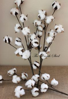 3 - 20 Long Stem Cotton Bolls, Natural Cotton Boll, Wedding Decor, 2nd Anniversary Gifts, Hand Wrapped Stems, Southern Decor, Cotton Decor  Free
