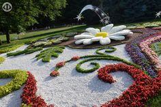 #FlowerShow 20015 #Kiev #Kyiv #Ukraine