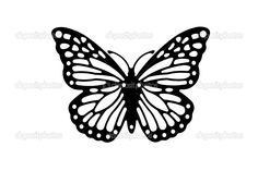 Image detail for -Butterfly silhouette | Stock Photo © Alan Bozac #2521265