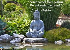More Buddha quotes...