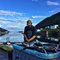 Fisherman | Family travel in Newfoundland, Canada