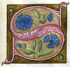 """""""S"""" letter (f°24r) -- Alphabet Book, by French Artist, Paris (France), ca1550 [Walters W.200]"""