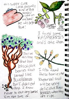 Art is a part of enjoying and appreciating nature, maybe even a nature journal?