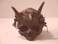 Este cráneo fue descubierto en Francia entre 1920 y 1940. Su fácilmente uno de los artefactos más polémicos de su época. El museo de la historia sobrenatural afirma (a través del análisis) que los cuernos son, de hecho, una parte natural del cráneo.