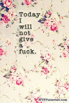 Today I will not give a fuck. (from WTFPinterest.com) (Get image sized to use as your Facebook cover photo on the blog.)