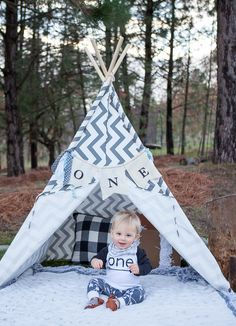 One Year - First Birthday - Woodland Photo Ideas