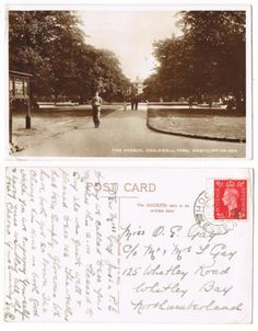 Early Postcard, Essex , Westcliff On Sea, Chalkwell Park, The Avenue, 1950 RP | eBay