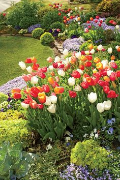 Front Yard Garden Design Linda Vater English Garden with Tulips in Oklahoma - Linda Vater shares the tips she picked up when putting together her Oklahoma garden. Front Yard Garden Design, Small Front Yard Landscaping, Landscaping Ideas, Yard Design, Planting Tulips, Tulips Garden, Growing Tulips, Small Flower Gardens, Small Flowers
