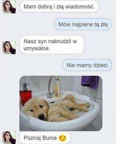 Wtf Funny, Funny Jokes, Hilarious, Cute Pupies, Funny Lyrics, Funny Animals, Cute Animals, Polish Memes, Best Memes Ever