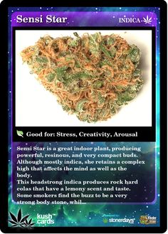 Sensi Star Medical Marijuana Reviews - THC Finder