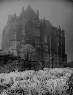 Classic style....Gothic Architecture. (Horrific Finds, Facebook)