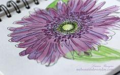 A Peek Inside My Sketchbook of watercolor and pen flower drawings.
