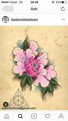 Hinh xam hoa