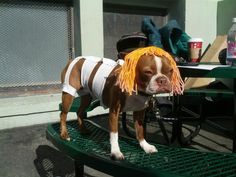 The Best FIFTH ELEMENT Cosplay Ever