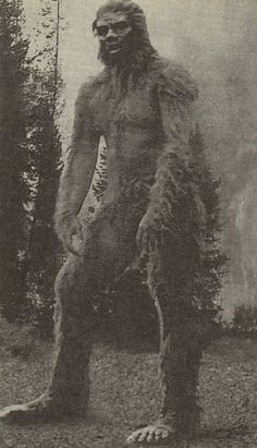 (Hoaxsters explained many times - still popular myth) Mount St. Creepy, without question. Yeti Bigfoot, Bigfoot Sasquatch, Weird Creatures, Mythical Creatures, Bigfoot Pictures, Pie Grande, Creepy, Scary, Bigfoot Sightings