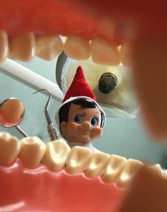 Our #ElfOnTheShelf #Hermey is practicing his #dental skills!