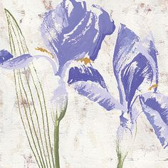 """Purple Glory I"" #Irises #Floral #Print by #NikitaCoulombe now available on #RoaringBrookArt"