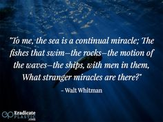 People love the ocean for different reasons. We have compiled 25 inspiring quotes about the ocean and the effect it has on people. Ocean Quotes, Inspiring Quotes, The Rock, Plastic, People, Life Inspirational Quotes, Sea Quotes, Inspire Quotes, Inspirational Quotes