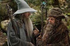 Lotr Gandalf gif | Gandalf the Grey With Radagast the Brown