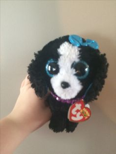 11 Best My Own Beanie Boo images  c22e4405f25d