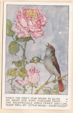 """""""Nightingale Sings to the Rose""""VA2038 Signed Artist Postcard M. Sowerby-"""