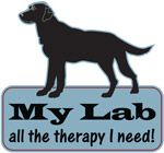 My Lab, all the therapy i need!