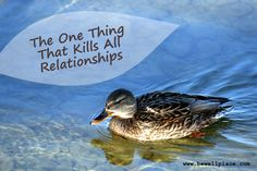 The One Thing That Kills All Relationships - The Be Well Place Disappointed, When Us, Other People, The One, Relationships, Campaign, Happiness, Hands, Wellness