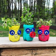 #getcreativewith hashtag on Instagram • Photos and Videos Plastic Bottles, Planter Pots, Photo And Video, Videos, Photos, Instagram, Pet Plastic Bottles, Plastic Water Bottles, Pictures