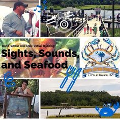 Venture to #LittleRiverSC this May for our World Famous Blue Crab Festival which features scenic #sights the lovely #sounds of live #BeachMusic and of course #Seafood from the local waterfront restaurants. #LRBlueCrab BlueCrabFestival.org #TravelTuesday #Travel #Vacation #Festival #FamilyFun #BikersWelcome