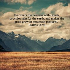 Proverbs To acquire wisdom is to love yourself; people who cherish understanding will prosper. Isaiah 32, Psalm 147, The Lord Is Good, Fear Of The Lord, Bible Quotes, Bible Verses, Bible Book, Scriptures, Lucas 2