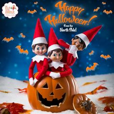 Happy Halloween from The Elf on the Shelf! | Elf on the Shelf Ideas