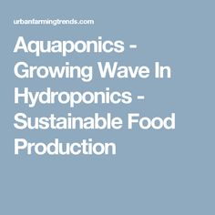 Aquaponics - Growing Wave In Hydroponics - Sustainable Food Production