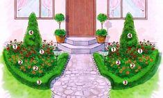 клумбы из почвопокровных роз