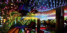 Greenhouse Club: una discoteca ecológica | Diario Ecologia